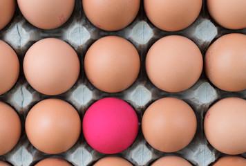 Free range eggs, food market display