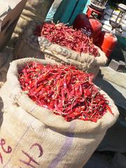 View of sacks of chili's