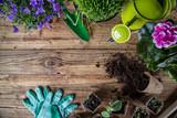 venkovní zahradní nářadí a byliny