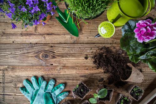 Outdoor narzędzia ogrodnicze i zioła
