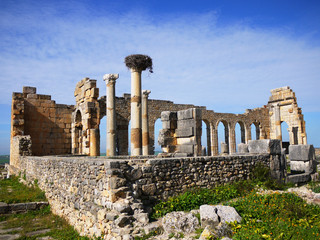 Morocco, Volubilis, Moulay Idriss, Old ruins of ancient Roman town