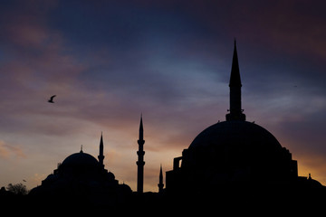 Turkey, Istanbul, Blue mosque at sunset