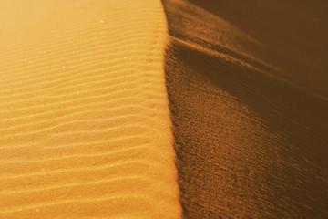 Ridge of sand dune
