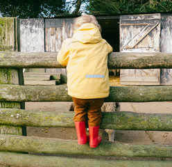 UK, Young Boy Leaning Over Farm Fence