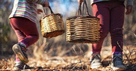 Two girls carrying baskets