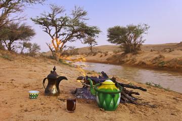 Saudi Arabia, Picnic in desert