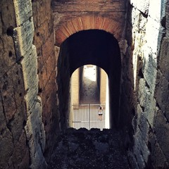 Rome, Colosseum, Archway