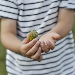 Boy holding acorn