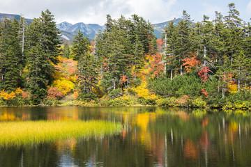 大雪山高原沼めぐりコース緑沼から白雲岳を望む