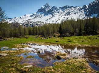 pozza d'acqua con montagne specchiate