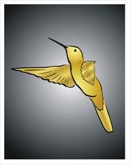colibrí dorado sobre fondo negro