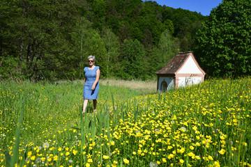 Spaziergang in Frühlingswiese