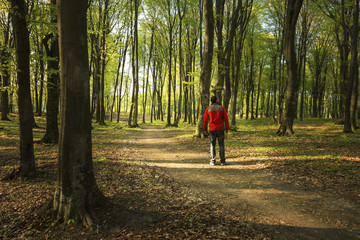 Man walking inside a forest