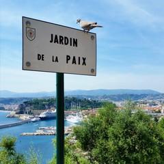 Welcome to Nice! :)