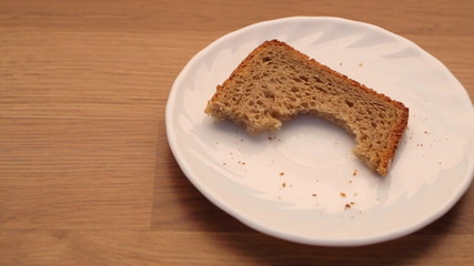 Slice of rye bread and crumbs on plate kitchen table