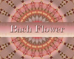 Bach flower special design with mandala