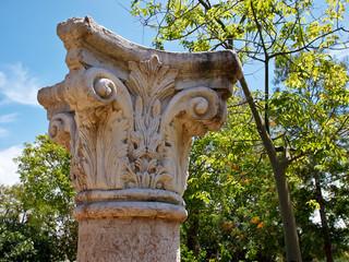 Corinthian Greek Ionic Roman Classical Marble Column