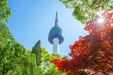 Seoul Tower and red autumn maple leaves at Namsan mountain in So