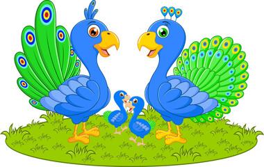 Happy peacock family cartoon