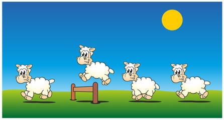 Sheeps Jumping Day