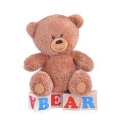 Teddy bear on wooden blocks, which were written by the bear