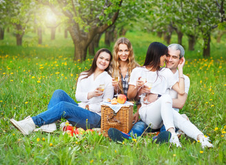 Smiling friends drinking champagne on picnic