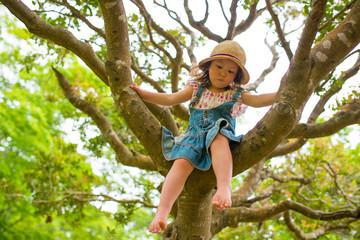 木登りをする女の子