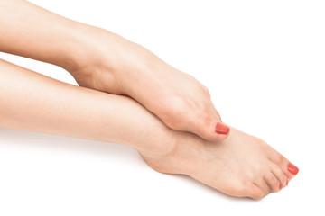feet on a white background