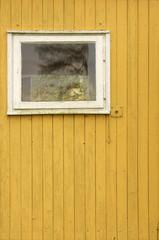 Bretterwand /  Bretterwand eines Gartenhäuschens mit Fenster