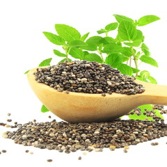 chia seed in wooden spoon with chia plant in  white background