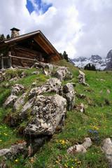 Primavera al cospetto delle Dolomiti di Brenta