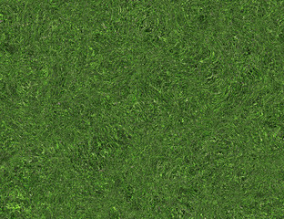 bright curled twisted green grass texture
