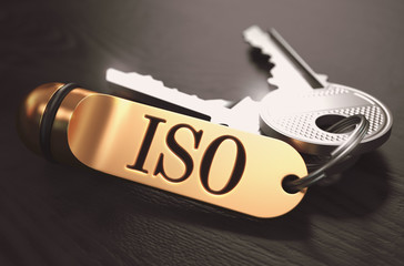 ISO Concept. Keys with Golden Keyring.