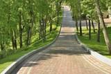 Красивая аллея в парке - 83648869