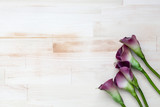 purple calla lilies on bright wooden background