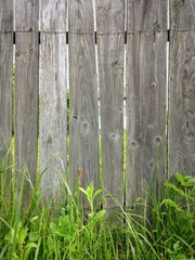 old rural fence and grass