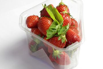 fraises 20052015