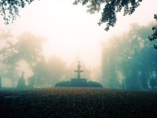 Jardim assustador num dia de nevoeiro