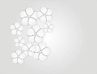 paper floral background