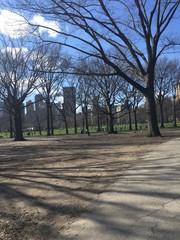 Fim de inverno no Central Park