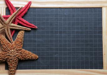 Asteroidea Étoile de mer Estrellas de mar Rozgwiazdy نجم البحر