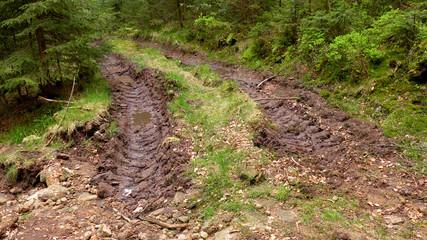Traktorspuren