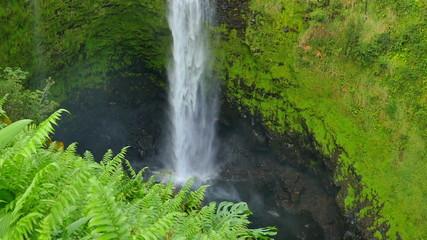 ハワイ島 アカカの滝