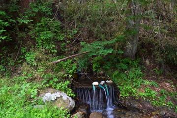 安曇野市 満願寺の湧水