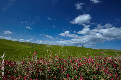 Scenic Tuscany landscape with rolling hills and beautiful clouds