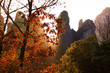 Beautiful autumn landscape in Meteora, Greece