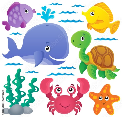 Poster Ocean fauna thematic collection 1