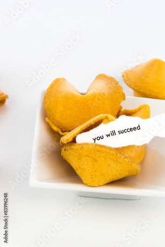 Poster open fortune cookie - YOU WILL SUCCEED