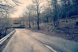 asphalt road in autumn forest warm filter applied - 84058206