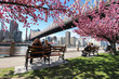 Obrazy na płótnie, fototapety, zdjęcia, fotoobrazy drukowane : New York City / Roosevelt Island